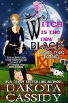Witch Is The New Black (Paris, Texas Romance Book 3) - Dakota Cassidy