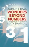 Wonders Beyond Numbers, A Brief History of All Things Mathematical - Johnny Ball