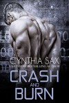 Crash And Burn - Cynthia Sax