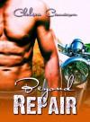Beyond Repair - Chelsea Camaron