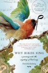 Why Birds Sing: A Journey Into the Mystery of Birdsong - David Rothenberg