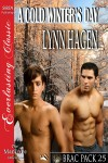 A Cold Winter's Day - Lynn Hagen