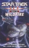 Wildfire - David Mack, Keith R.A. DeCandido, Christina F. York, J. Steven York
