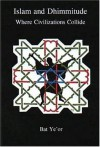 Islam and Dhimmitude: Where Civilizations Collide - Bat Yeor