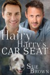 Hairy Harry's Car Seat - Sue  Brown