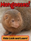 Mongooses! Learn About Mongooses and Enjoy Colorful Pictures - Look and Learn! (50+ Photos of Mongooses) - Becky Wolff