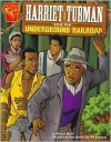 Harriet Tubman and the Underground Railroad (Graphic Library Series) - Michael Martin,  Bill Anderson (Illustrator),  Dave Hoover (Illustrator)