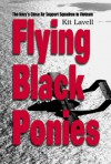 Flying Black Ponies: The Navy's Close Air Support Squadron in Vietnam - Kit Lavell