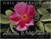 Gail Niebrugge's Alaska Wildflowers - Gail Niebrugge