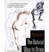 The Natural Way to Draw - Kimon Nicolaides, Mamie Harmon