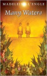 Many Waters (Time, Book 4) - Madeleine L'Engle