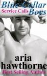 Service Calls - Aria Hawthorne