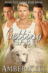 Getting Gabe  - Amber Kell