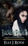 Broken Flight (Angels of Punishment) - Elle J Rossi