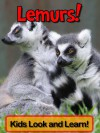 Lemurs! Learn About Lemurs and Enjoy Colorful Pictures - Look and Learn! (50+ Photos of Lemurs) - Becky Wolff