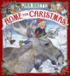 Home for Christmas - Jan Brett