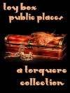 Toy Box: Public Places - M. Rode, Heidi Champa, Jay Lygon, G.R. Richards