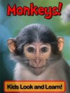 Monkeys! Learn About Monkeys and Enjoy Colorful Pictures - Look and Learn! (50+ Photos of Monkeys) - Becky Wolff