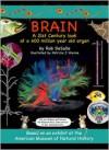 Brain: A 21st Century Look at a 400 Million Year Old Organ - Rob DeSalle, Patricia Wynne