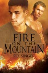 Fire on the Mountain - P.D. Singer
