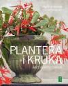 Plantera i kruka - Agneta Ullenius