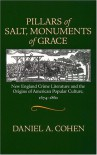 Pillars of Salt, Monuments of Grace: New England Crime Literature and the Origins of American Popular Culture, 1674-1860 - Daniel A. Cohen