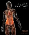 Human Anatomy [With CDROM and Paperback Book and Access Code] - Frederic Martinti, Michael J. Timmons, Robert B. Tallitsch