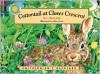 Cottontail at Clover Crescent - Drew Lamm