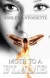 Moth to a Flame - Ashley Antoinette