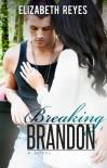 Breaking Brandon  - Elizabeth Reyes