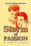 Storm of Passion: A Short Story - Dustin Adrian Rhodes