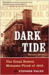 Dark Tide: The Great Molasses Flood of 1919 - Stephen Puleo
