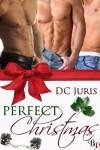 Perfect Christmas - DC Juris