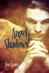 Angel In The Shadows - Lisa Grace