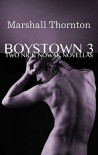 Boystown 3: Two Nick Nowak Novellas (Boystown Mysteries) - Marshall Thornton