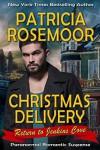 Christmas Delivery - Patricia Rosemoor