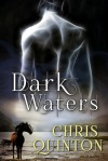 Dark Waters - Chris Quinton