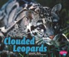 Clouded Leopards - Jennifer L. Marks, Gail Saunders-Smith