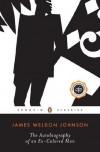 The Autobiography of an Ex-Colored Man (Penguin Twentieth Century Classics) - James Weldon Johnson, William L. Andrews