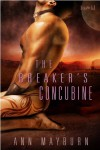 The Breaker's Concubine - Ann Mayburn