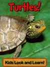 Turtles! Learn About Turtles and Enjoy Colorful Pictures - Look and Learn! (50+ Photos of Turtles) - Becky Wolff