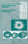 The Cyanobacteria: Molecular Biology, Genomics and Evolution - Antonia Herrero, Antonia Herrero