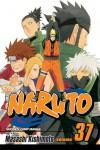 Naruto, Vol. 37: Shikamaru's Battle (Naruto, #37) - Masashi Kishimoto