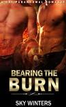 ROMANCE: GAY ROMANCE: Bearing the Burn (MM Gay Alpha Shifter Romance) (Gay Paranormal Romance) - Sky Winters
