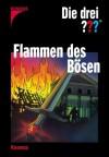 Die drei ???. Flammen des Bösen - Brigitte Johanna Henkel-Waidhofer, André Marx, André Minninger