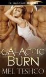 Galactic Burn - Mel Teshco