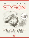 Darkness Visible - William Styron