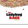 The Ladybug Race - Amy Nielander, Amy Nielander