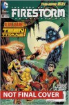 The Fury of Firestorm: The Nuclear Men Vol. 3: Takeover (The New 52) - Dan Jurgens,  Ray McCarthy (Illustrator)