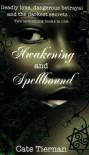 Awakening & Spellbound - Cate Tiernan